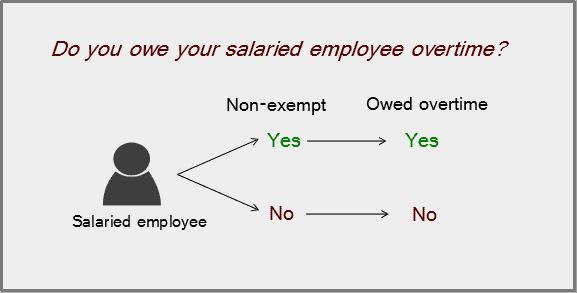 non exempt position