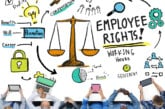 Federal Employment Laws: Do They Apply to You?