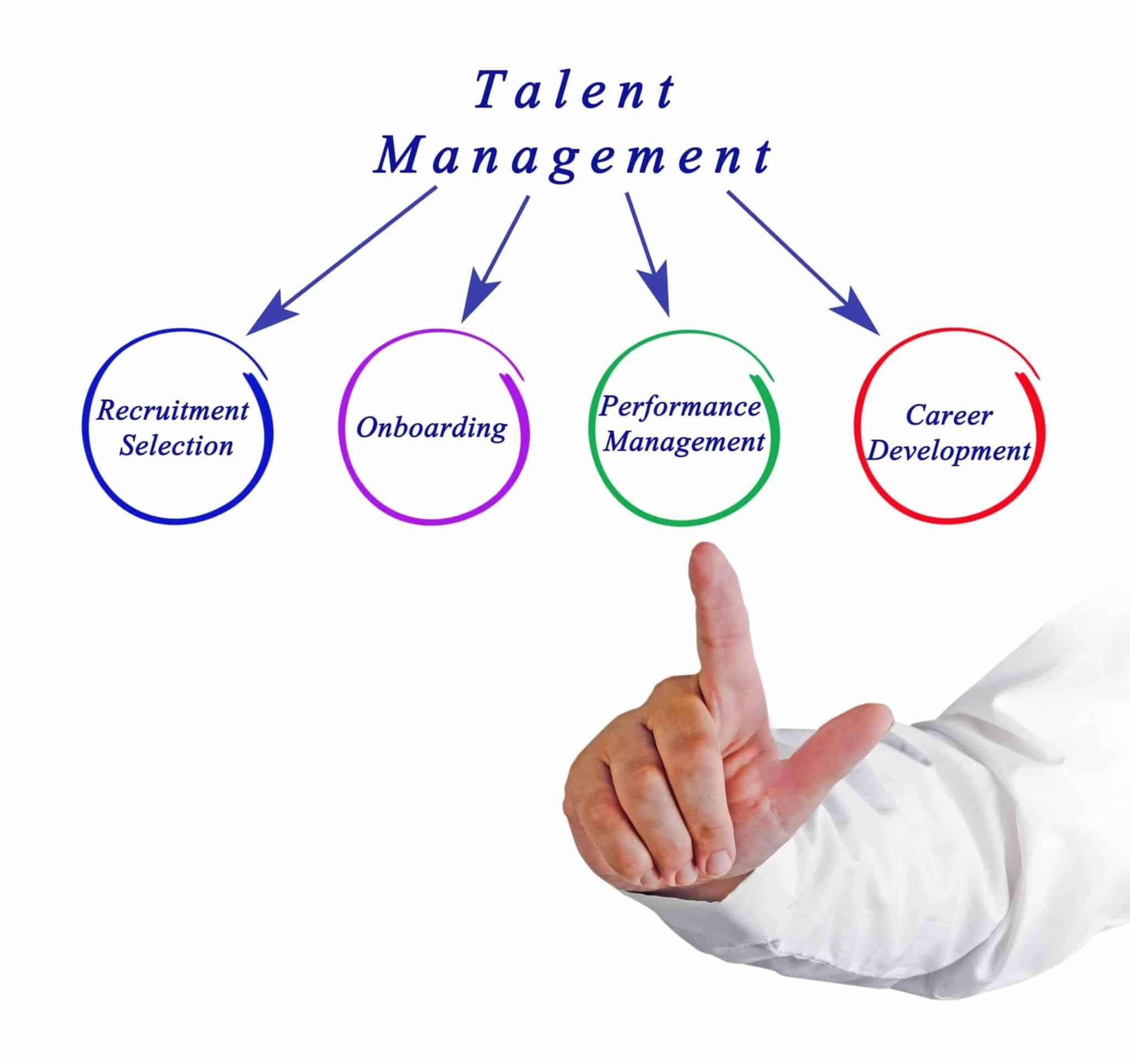 Diagram of Talent Management