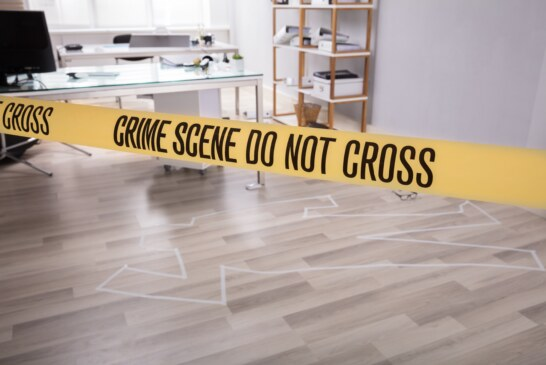 Workplace Violence: Facts and Training